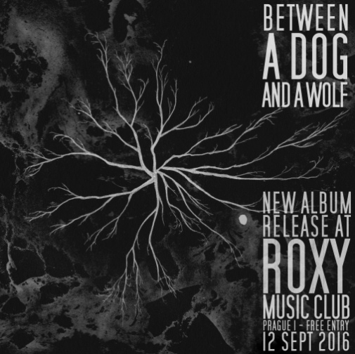 Release Party at Roxy